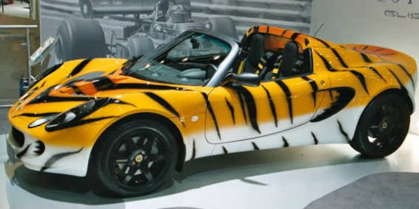 Lotus Elise Tiger Top10 Vehicle Wraps
