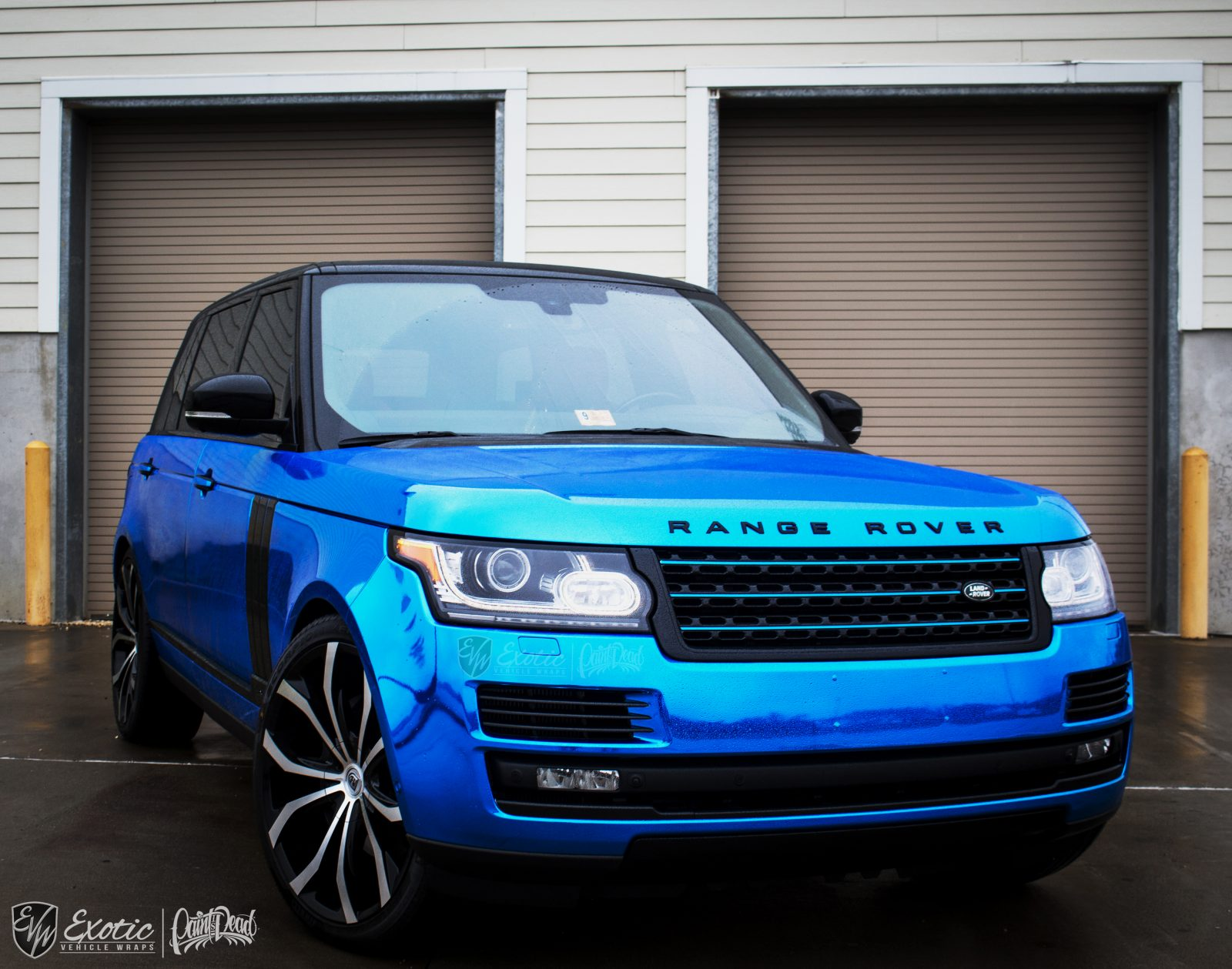 Exotic Vehicle Wraps Gallery And Portfolio