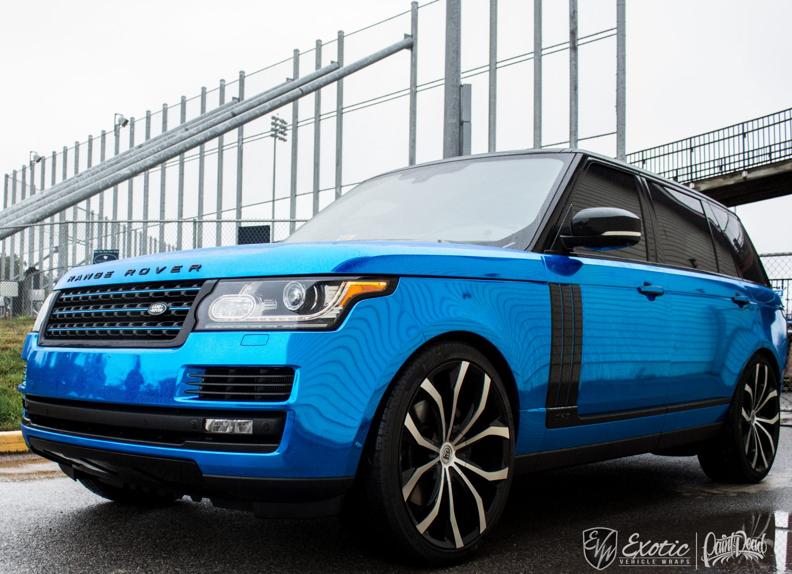 Matte Range Rover >> Vehicle Wraps, Paint Protection, Vehicle Customs Installations